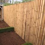 Bamboe 2 meter