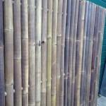 Bamboe donker