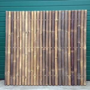 Bamboepalen belgie